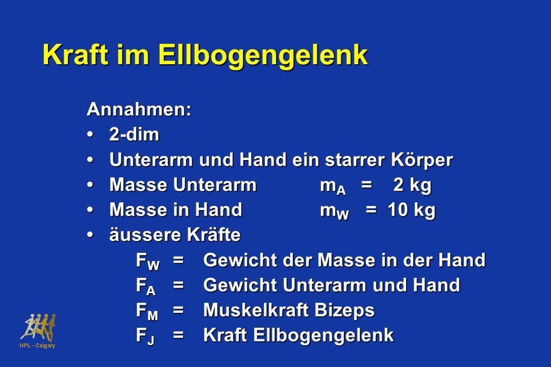 Annahmen: 2-dim Unterarm und Hand ein starrer Körper Masse Unterarm m A = 2 kg Masse in Hand m W = 10 kg äussere Kräfte F W =Gewicht der Masse in der