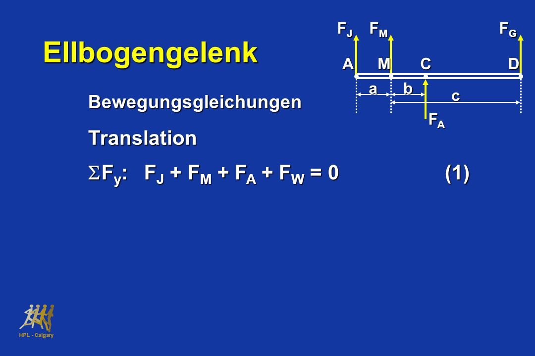 Bewegungsgleichungen Translation F y : F J + F M + F A + F W = 0(1) F y : F J + F M + F A + F W = 0(1) FJFJFJFJ FMFMFMFM FGFGFGFG FAFAFAFA ab c AMCD E