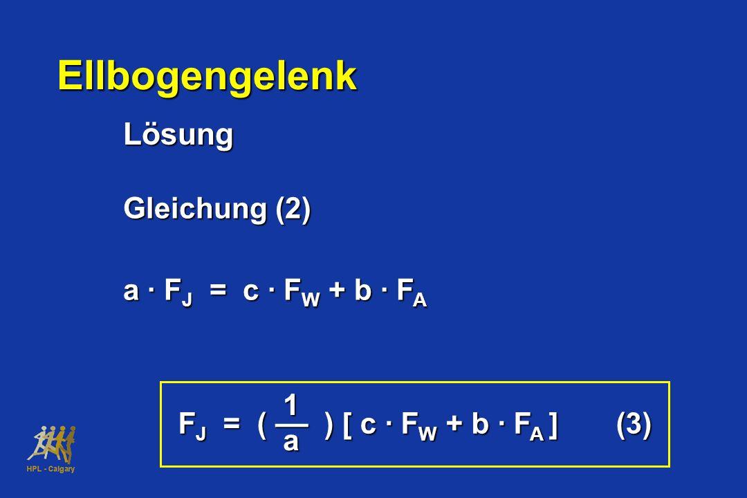 Ellbogengelenk Lösung Gleichung (2) a · F J = c · F W + b · F A 1 –– a F J = ( ) [ c · F W + b · F A ] (3)