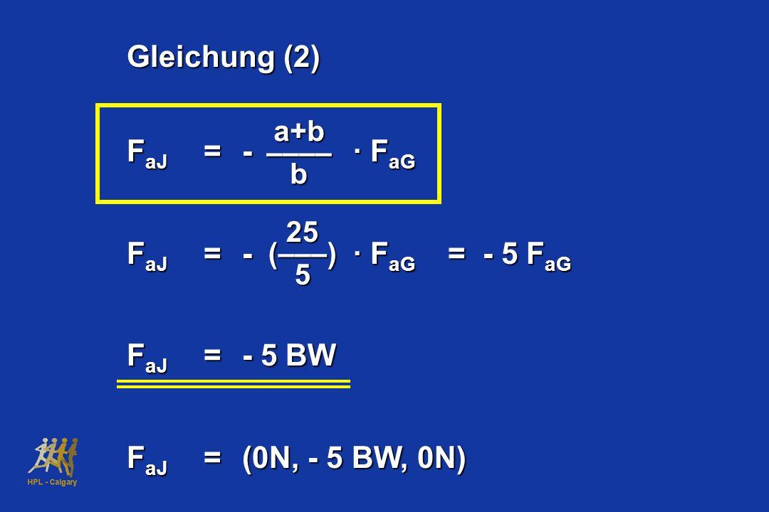 Gleichung (2) F aJ =- · F aG F aJ =- · F aG = - 5 F aG F aJ =- 5 BW F aJ =(0N, - 5 BW, 0N) a+b –––– b 25 (–––) 5