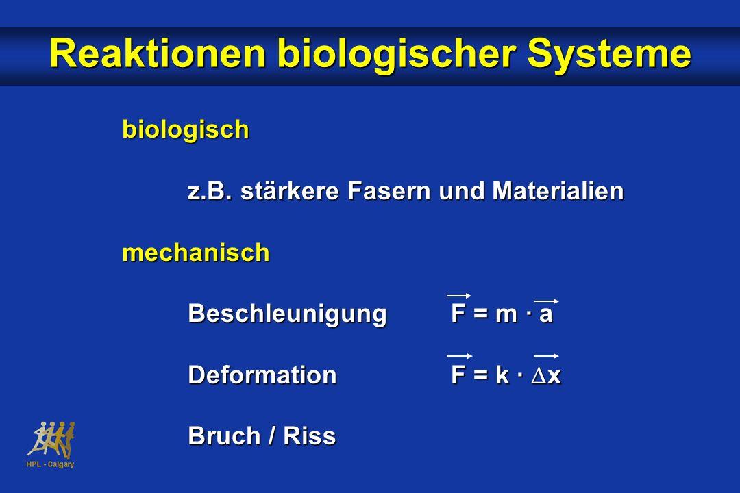 Reaktionen biologischer Systeme biologisch z.B. stärkere Fasern und Materialien mechanisch BeschleunigungF = m · a DeformationF = k · x Bruch / Riss