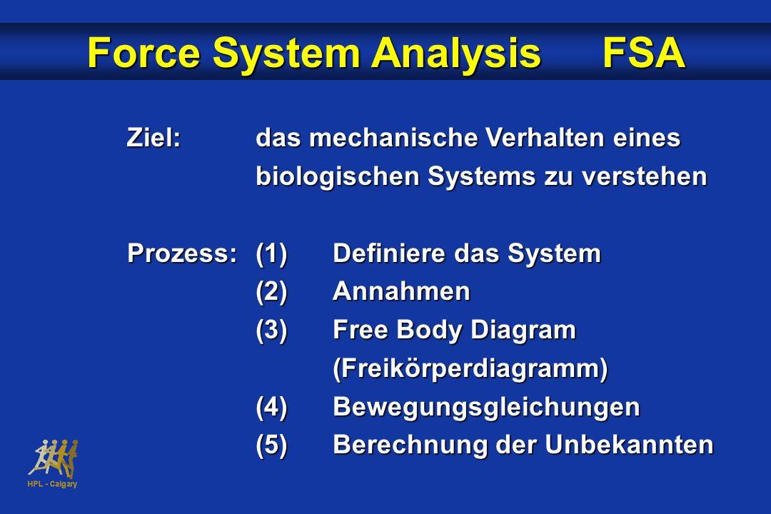 Ziel:das mechanische Verhalten eines biologischen Systems zu verstehen Prozess:(1)Definiere das System (2)Annahmen (3)Free Body Diagram (Freikörperdia