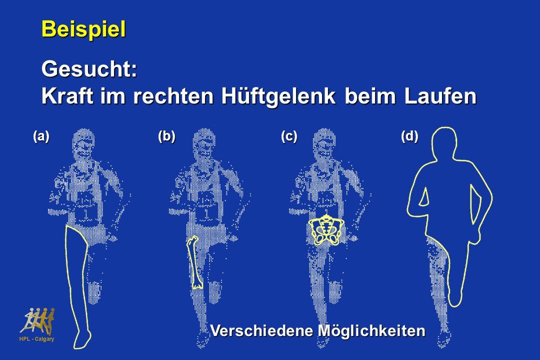 (a)(b)(c)(d) BeispielGesucht: Kraft im rechten Hüftgelenk beim Laufen Verschiedene Möglichkeiten