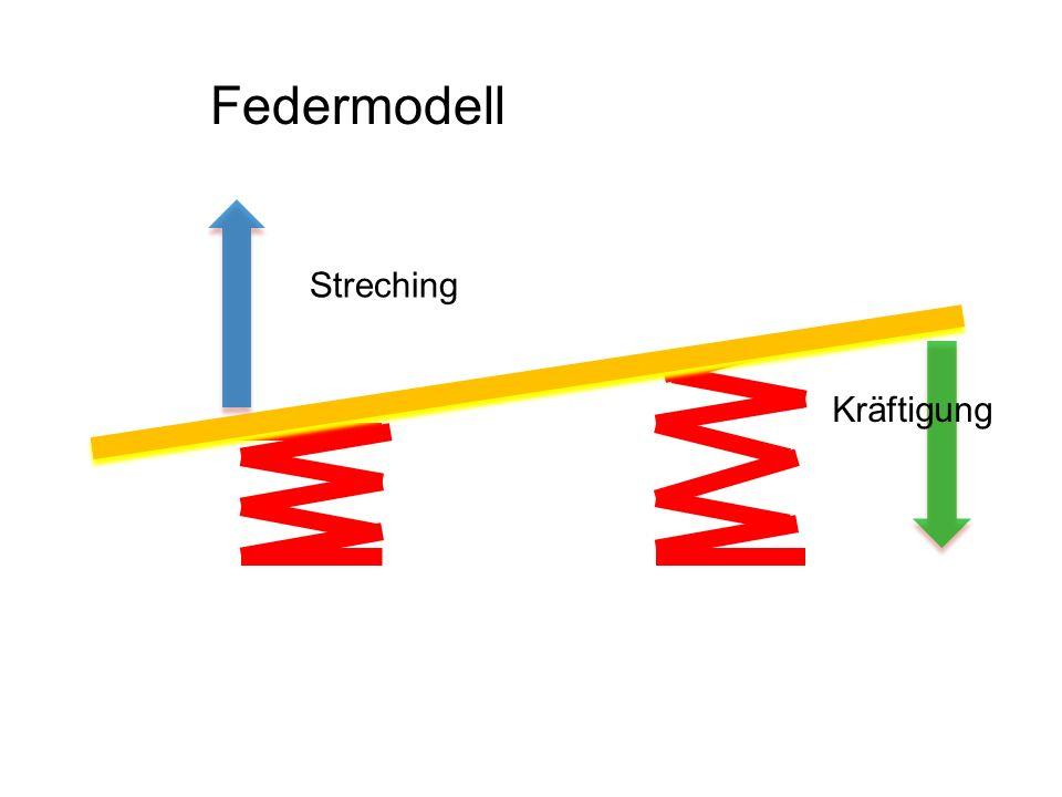 Streching Kräftigung Federmodell