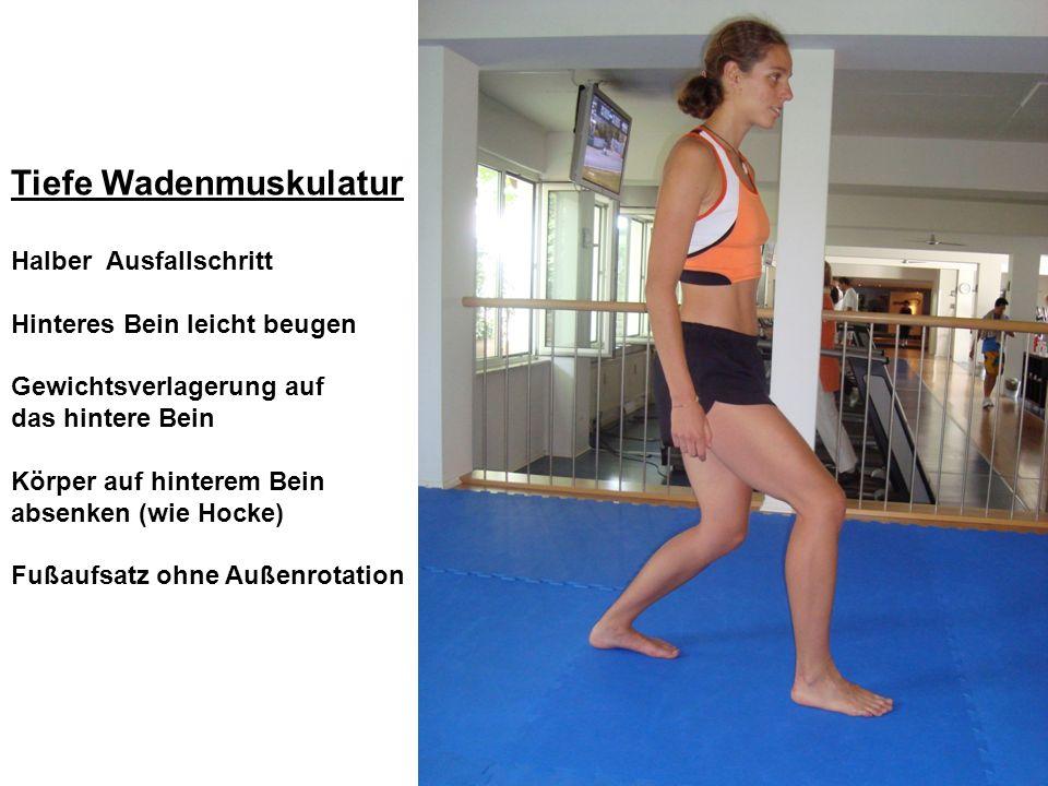 Tiefe Wadenmuskulatur Halber Ausfallschritt Hinteres Bein leicht beugen Gewichtsverlagerung auf das hintere Bein Körper auf hinterem Bein absenken (wi