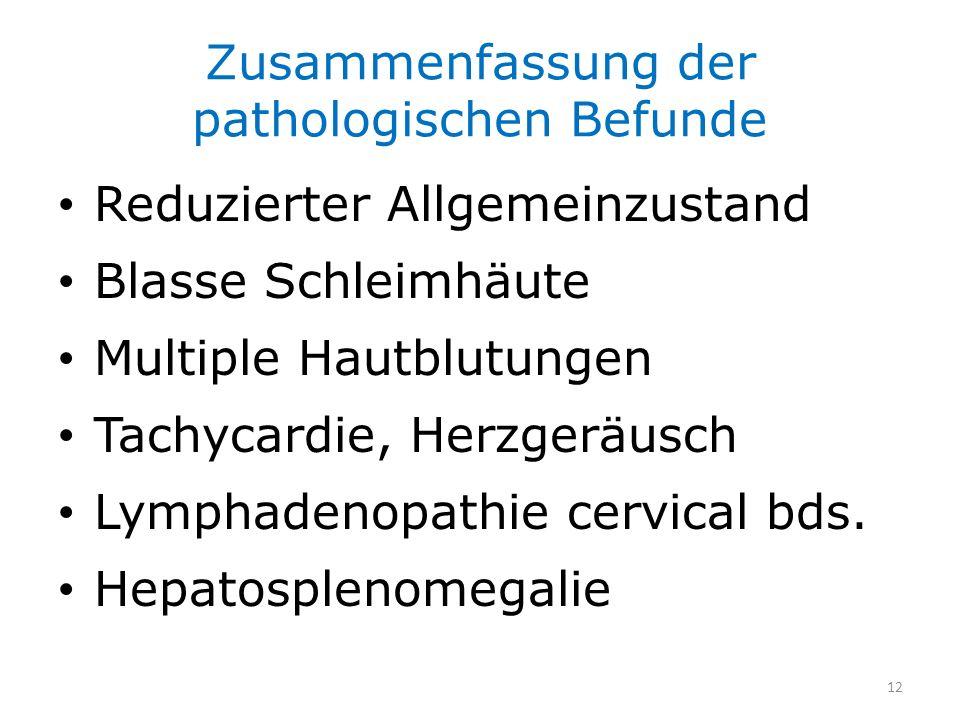 Zusammenfassung der pathologischen Befunde Reduzierter Allgemeinzustand Blasse Schleimhäute Multiple Hautblutungen Tachycardie, Herzgeräusch Lymphaden