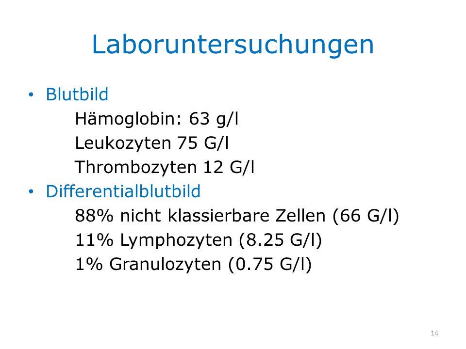 Laboruntersuchungen Blutbild Hämoglobin: 63 g/l Leukozyten 75 G/l Thrombozyten 12 G/l Differentialblutbild 88% nicht klassierbare Zellen (66 G/l) 11%