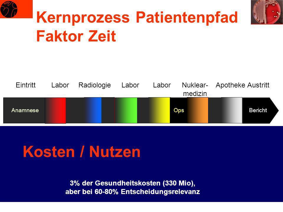 Kernprozess Patientenpfad Faktor Zeit EintrittLabor Anamnese Bericht Radiologie Röntgen Labor Mikro- biologie Labor Pathologie Ops Nuklear- medizin Ra