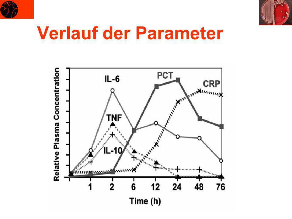 Verlauf der Parameter