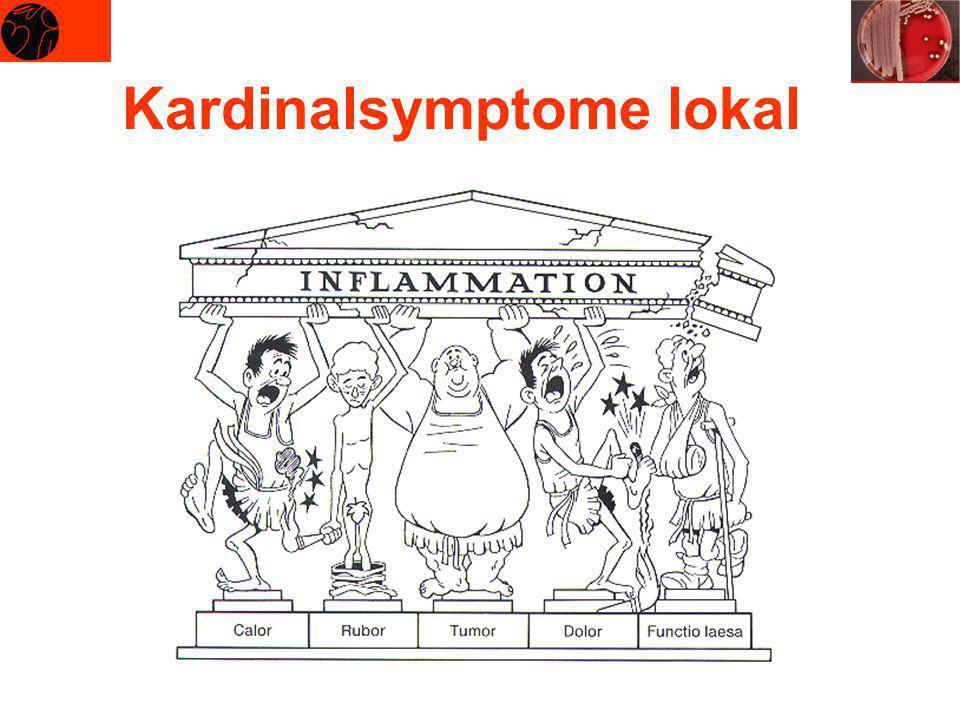 Kardinalsymptome lokal