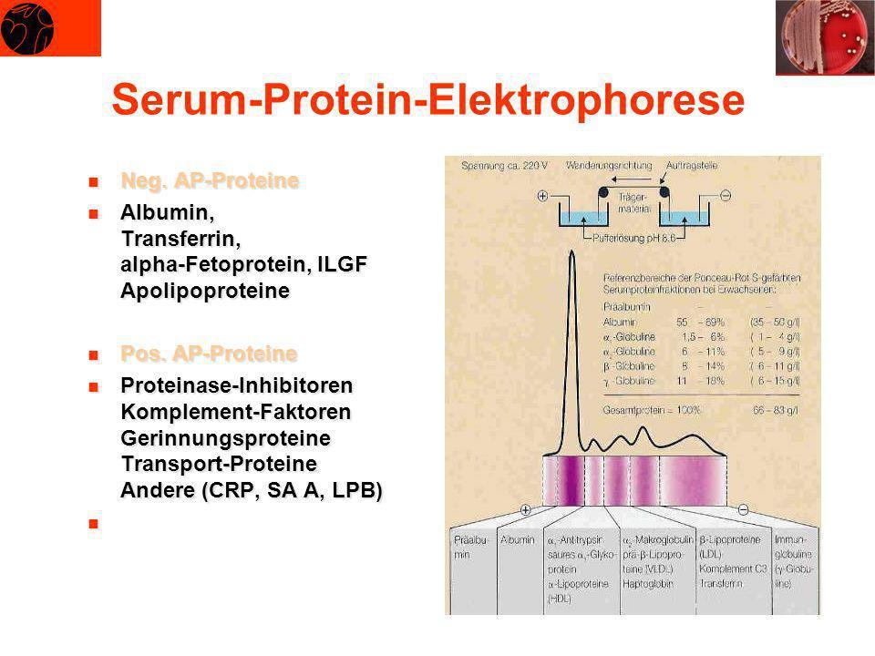 Serum-Protein-Elektrophorese Neg. AP-Proteine Neg. AP-Proteine Albumin, Transferrin, alpha-Fetoprotein, ILGF Apolipoproteine Albumin, Transferrin, alp