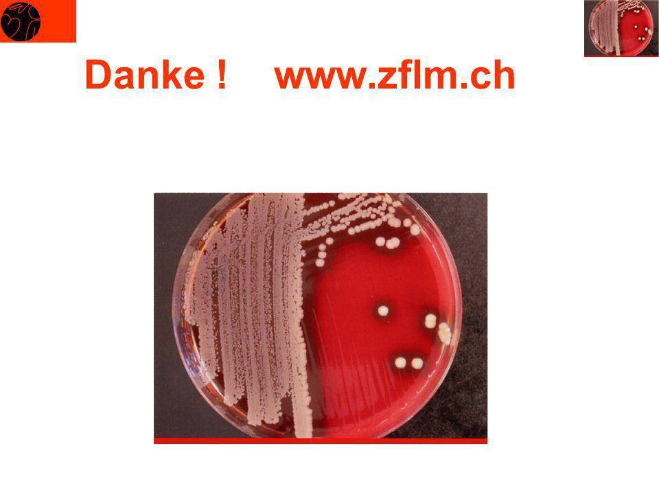 Danke ! www.zflm.ch
