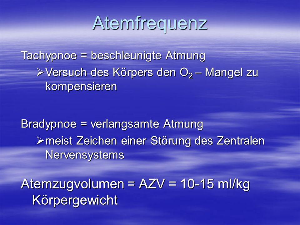 Atemfrequenz Atemzugvolumen = AZV = 10-15 ml/kg Körpergewicht Bradypnoe = verlangsamte Atmung meist Zeichen einer Störung des Zentralen Nervensystems