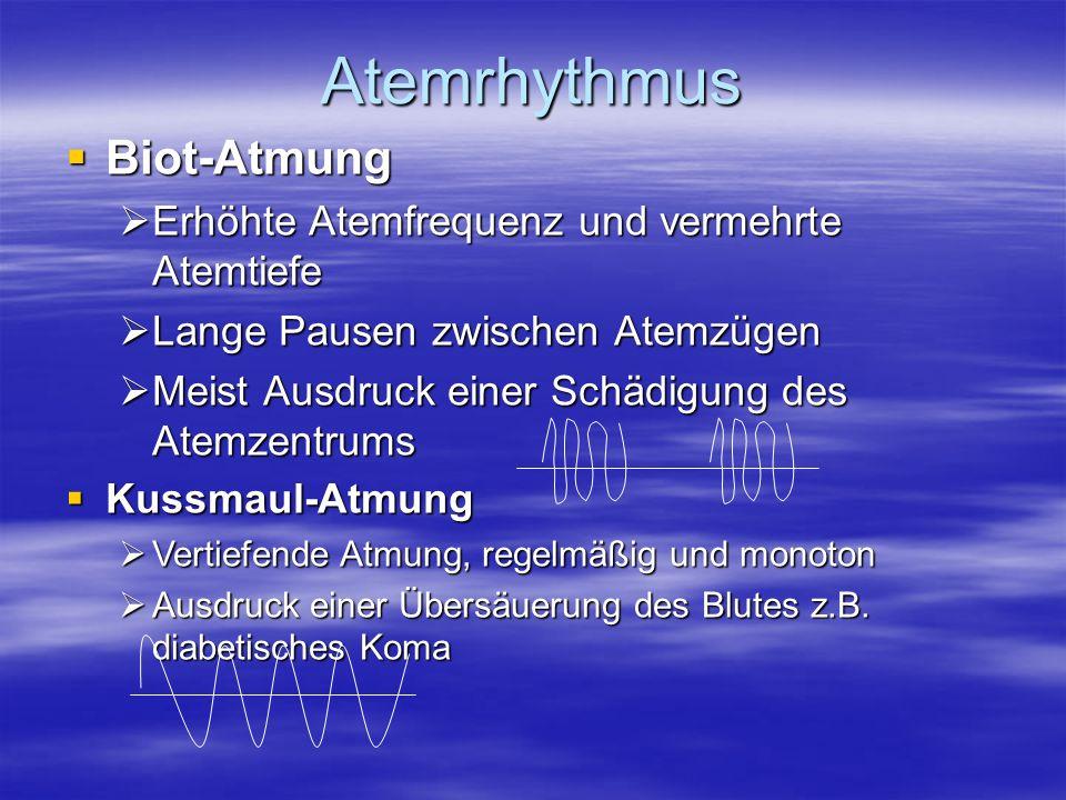 Atemrhythmus Biot-Atmung Biot-Atmung Erhöhte Atemfrequenz und vermehrte Atemtiefe Erhöhte Atemfrequenz und vermehrte Atemtiefe Lange Pausen zwischen A
