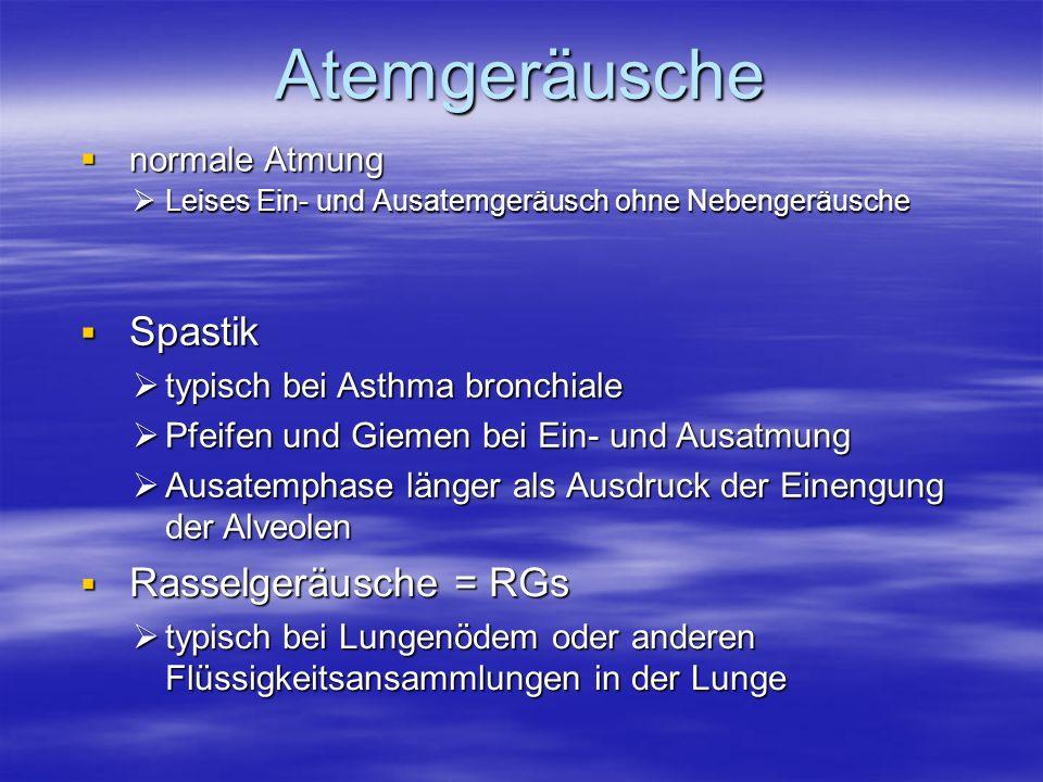 Atemgeräusche normale Atmung normale Atmung Leises Ein- und Ausatemgeräusch ohne Nebengeräusche Leises Ein- und Ausatemgeräusch ohne Nebengeräusche Sp