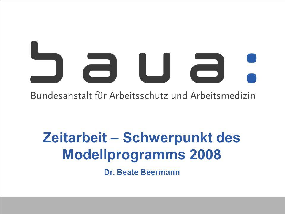 Zeitarbeit – Schwerpunkt des Modellprogramms 2008 Dr. Beate Beermann