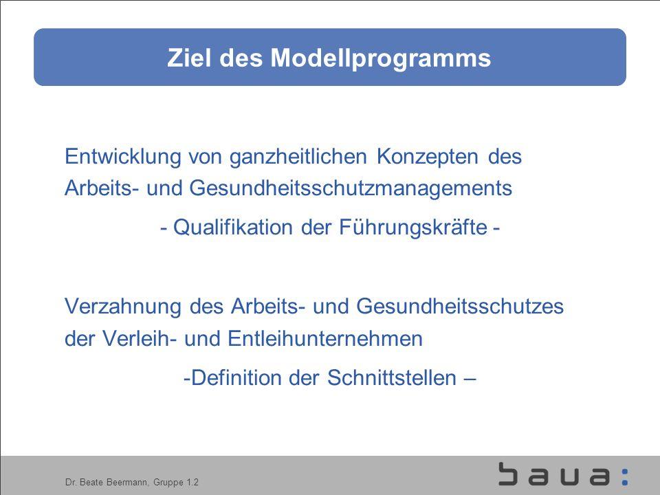 Dr. Beate Beermann, Gruppe 1.2 Ziel des Modellprogramms Entwicklung von ganzheitlichen Konzepten des Arbeits- und Gesundheitsschutzmanagements - Quali