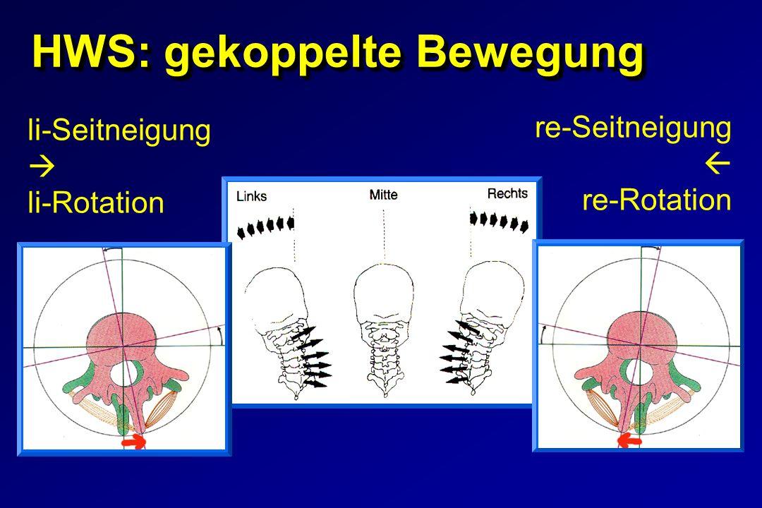 HWS: gekoppelte Bewegung li-Seitneigung li-Rotation re-Seitneigung re-Rotation