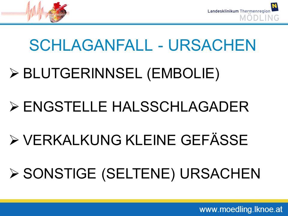 SCHLAGANFALL - URSACHEN BLUTGERINNSEL (EMBOLIE) ENGSTELLE HALSSCHLAGADER VERKALKUNG KLEINE GEFÄSSE SONSTIGE (SELTENE) URSACHEN