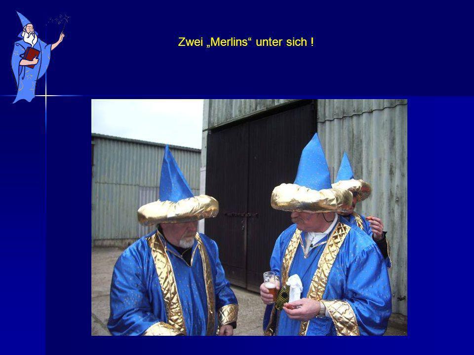 Zwei Merlins unter sich !