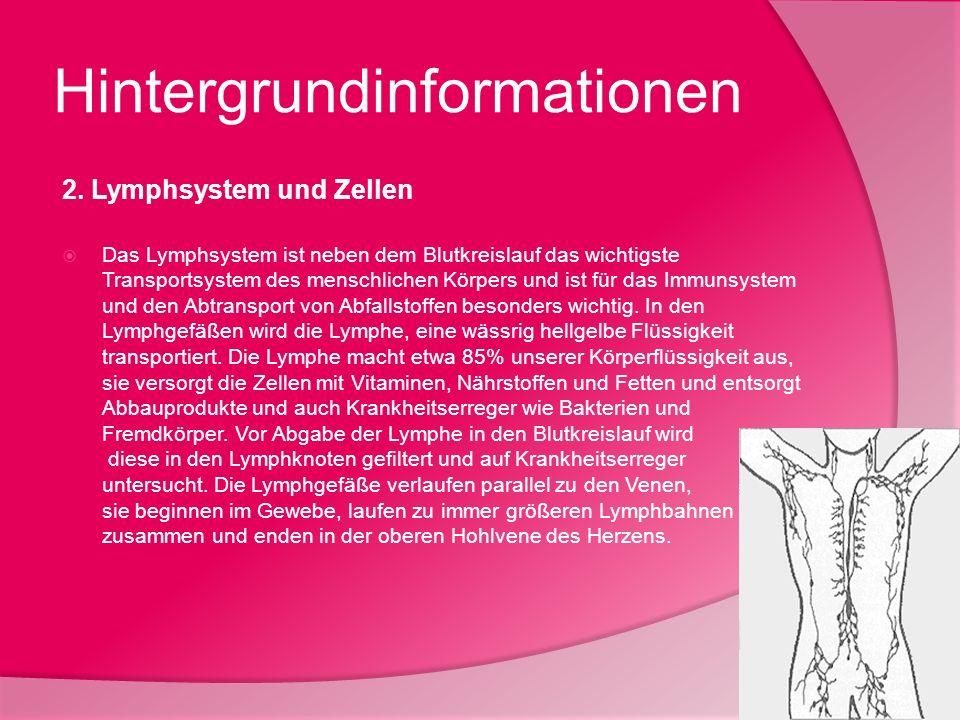 Hintergrundinformationen 2. Lymphsystem und Zellen Das Lymphsystem ist neben dem Blutkreislauf das wichtigste Transportsystem des menschlichen Körpers