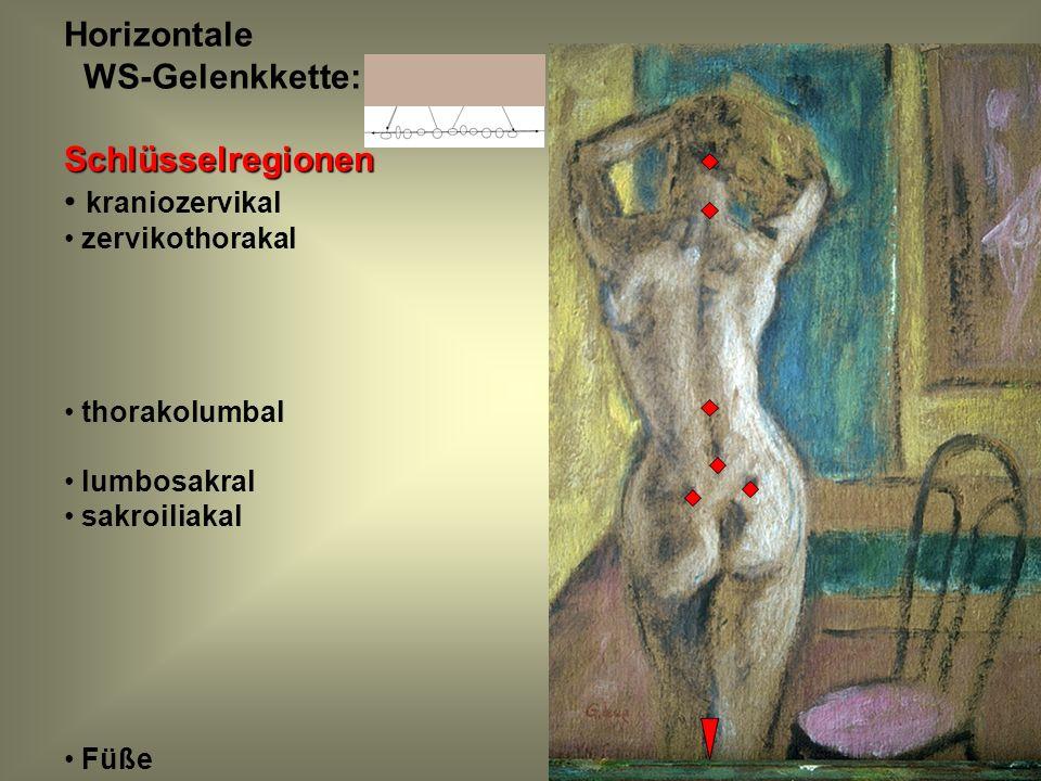 Horizontale WS-Gelenkkette:Schlüsselregionen kraniozervikal zervikothorakal thorakolumbal lumbosakral sakroiliakal Füße