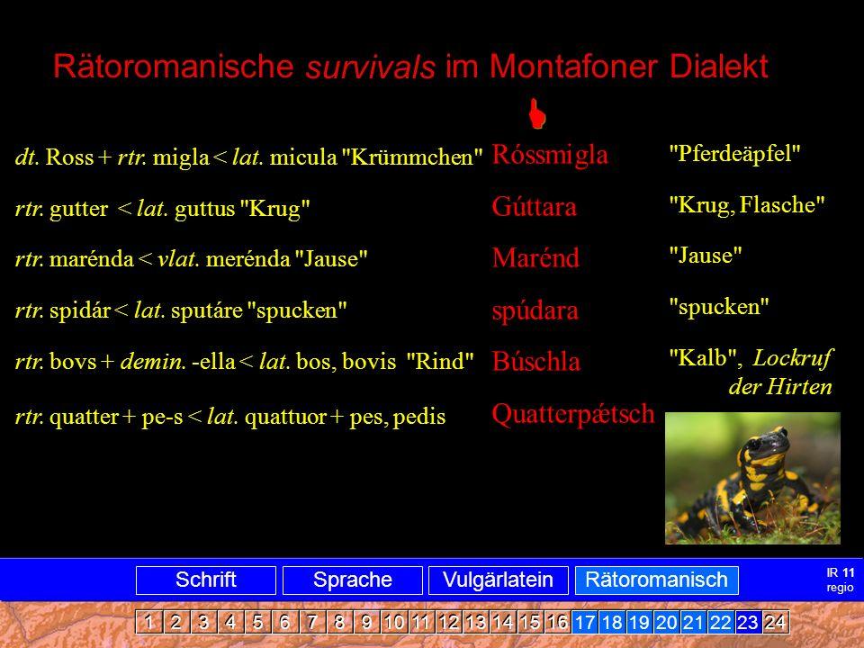 Rätoromanisch Dialekt Vlbg.