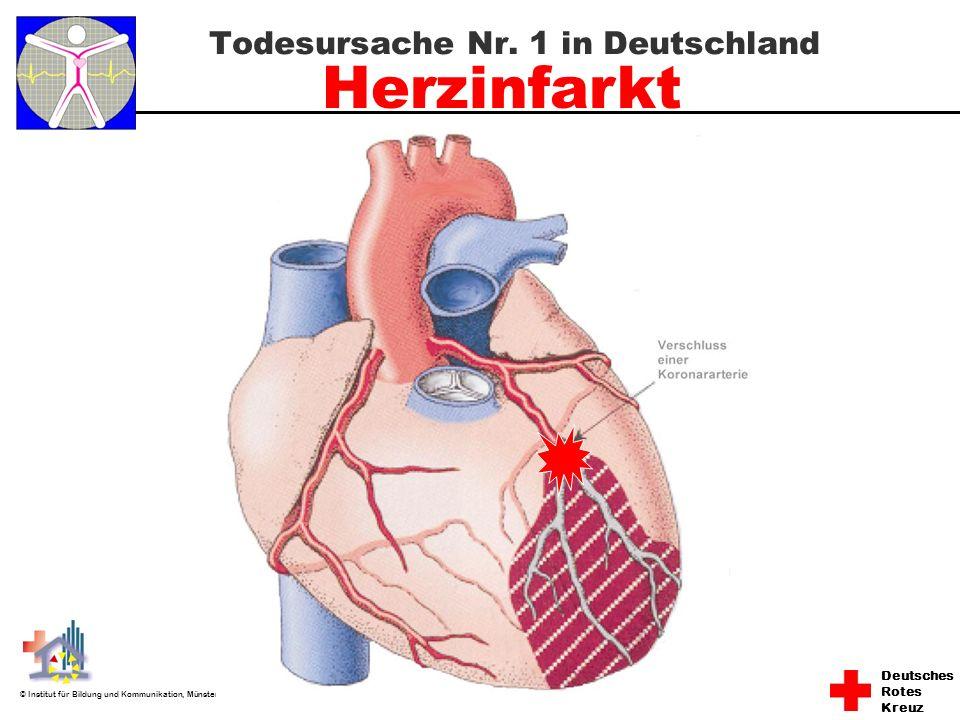 Deutsches Rotes Kreuz © Institut für Bildung und Kommunikation, Münster Todesursache Nr. 1 in Deutschland Herzinfarkt