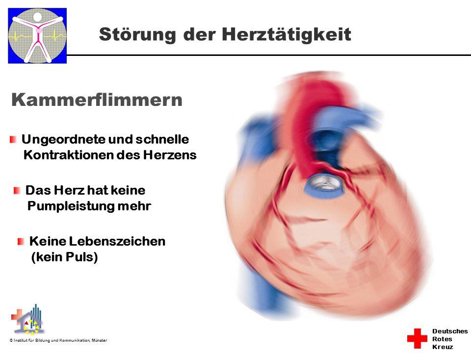 Deutsches Rotes Kreuz © Institut für Bildung und Kommunikation, Münster Störung der Herztätigkeit Kammerflimmern Ungeordnete und schnelle Kontraktione