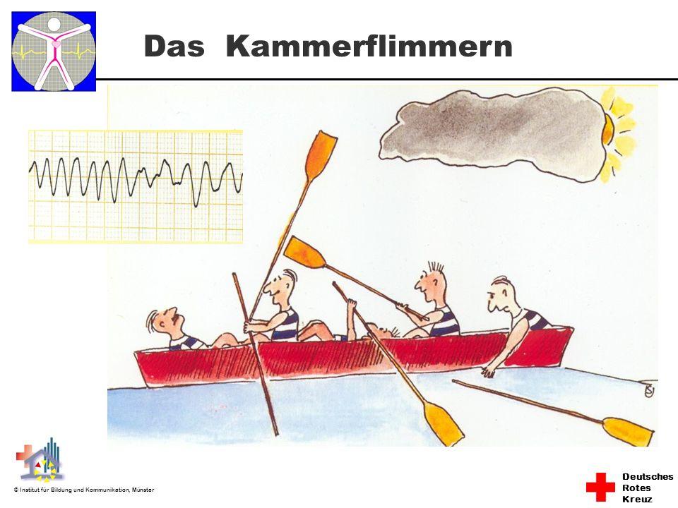 Deutsches Rotes Kreuz © Institut für Bildung und Kommunikation, Münster Das Kammerflimmern
