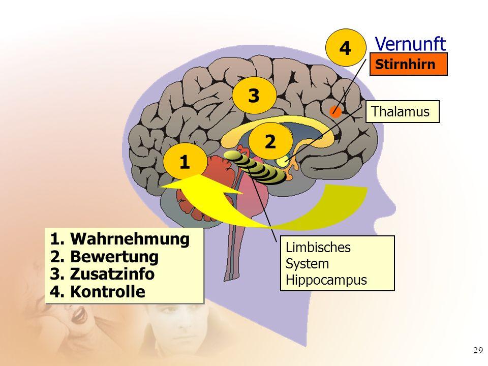 29 1. Wahrnehmung 2. Bewertung 3. Zusatzinfo 4. Kontrolle 3 Thalamus Limbisches System Hippocampus 2 Vernunft Stirnhirn 41