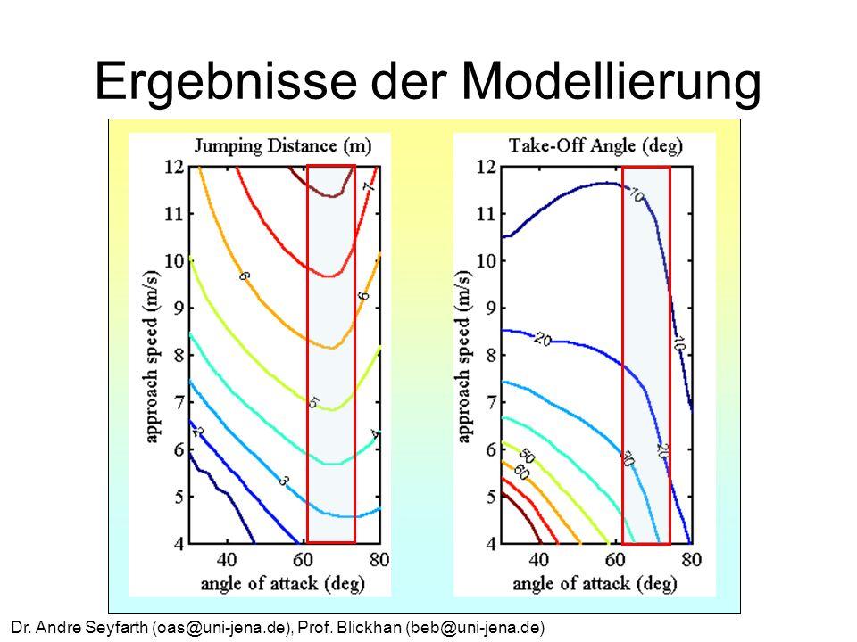 Dr. Andre Seyfarth (oas@uni-jena.de), Prof. Blickhan (beb@uni-jena.de) Ergebnisse der Modellierung