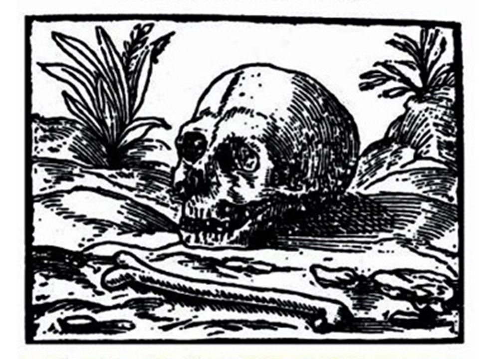 Gryphius: Absurda Comica 1.Dümmlich, unwichtiges nehmen sie wichtig, z.B.