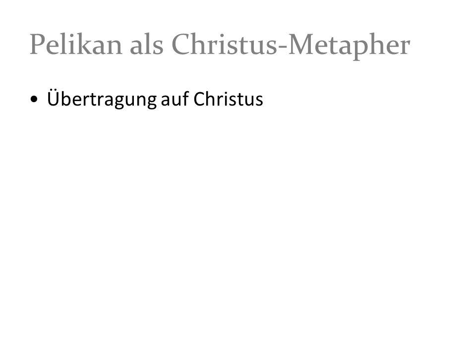 Pelikan als Christus-Metapher Übertragung auf Christus