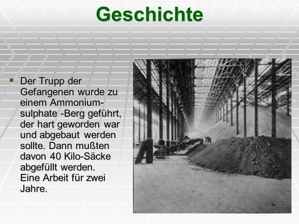 Geschichte Der Trupp der Gefangenen wurde zu einem Ammonium- sulphate -Berg geführt, der hart geworden war und abgebaut werden sollte. Dann mußten dav