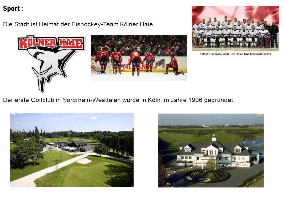 Sport : Die Stadt ist Heimat der Eishockey-Team K ö lner Haie.
