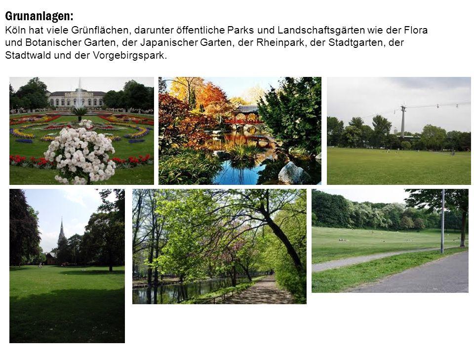 Grunanlagen: Köln hat viele Grünflächen, darunter öffentliche Parks und Landschaftsgärten wie der Flora und Botanischer Garten, der Japanischer Garten, der Rheinpark, der Stadtgarten, der Stadtwald und der Vorgebirgspark.