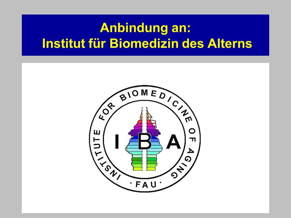 Anbindung an: Institut für Biomedizin des Alterns