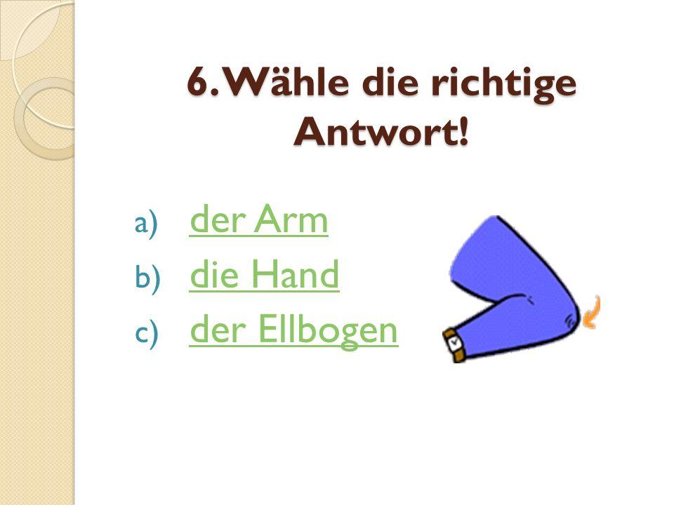 6. Wähle die richtige Antwort! a) der Arm der Arm b) die Hand die Hand c) der Ellbogen der Ellbogen