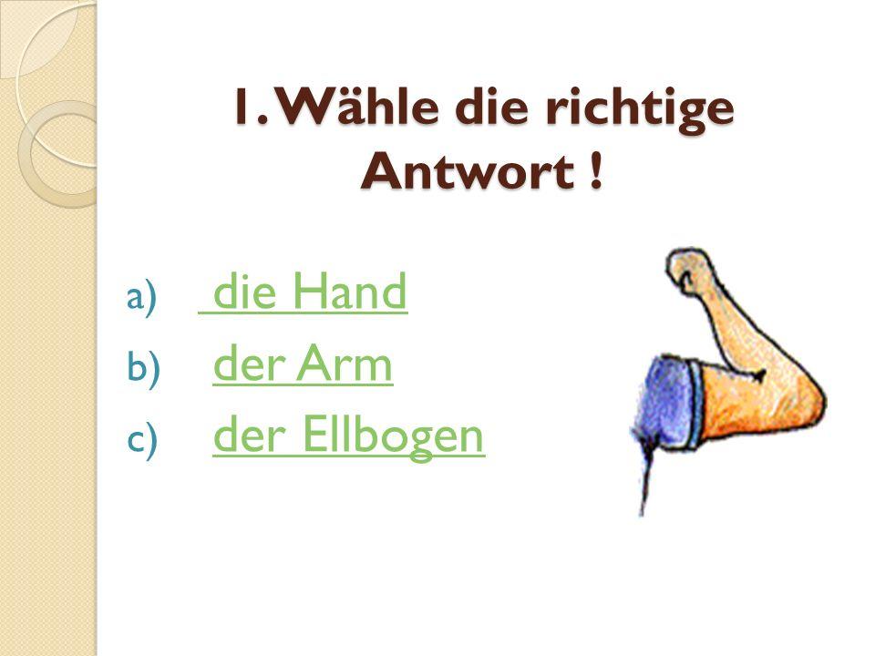 1. Wähle die richtige Antwort ! a) die Hand die Hand b) der Armder Arm c) der Ellbogender Ellbogen