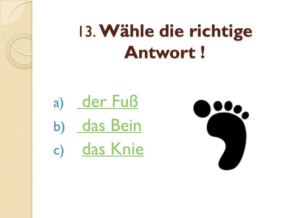 13. Wähle die richtige Antwort ! a) der Fuß der Fuß b) das Bein das Bein c) das Kniedas Knie