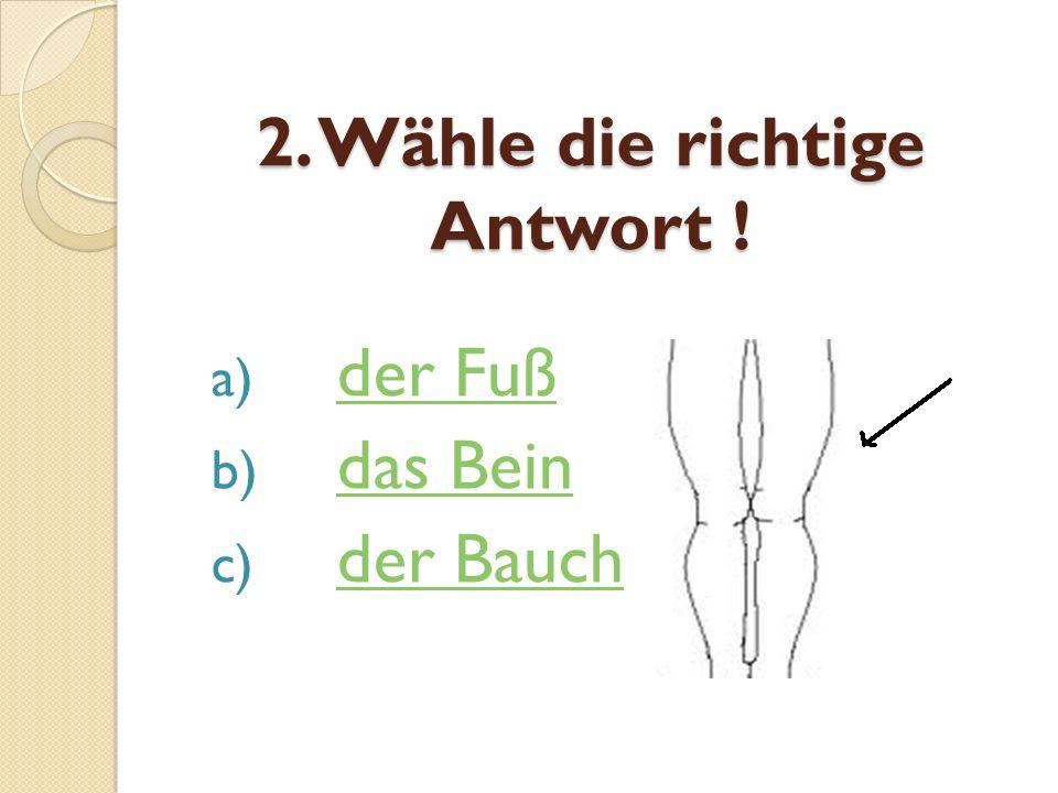 2. Wähle die richtige Antwort ! a) der Fußder Fuß b) das Beindas Bein c) der Bauchder Bauch