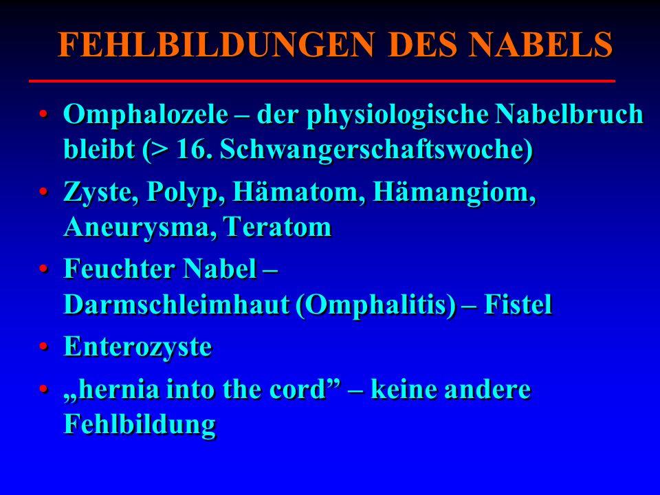 FEHLBILDUNGEN DES NABELS Omphalozele – der physiologische Nabelbruch bleibt (> 16. Schwangerschaftswoche) Zyste, Polyp, Hämatom, Hämangiom, Aneurysma,