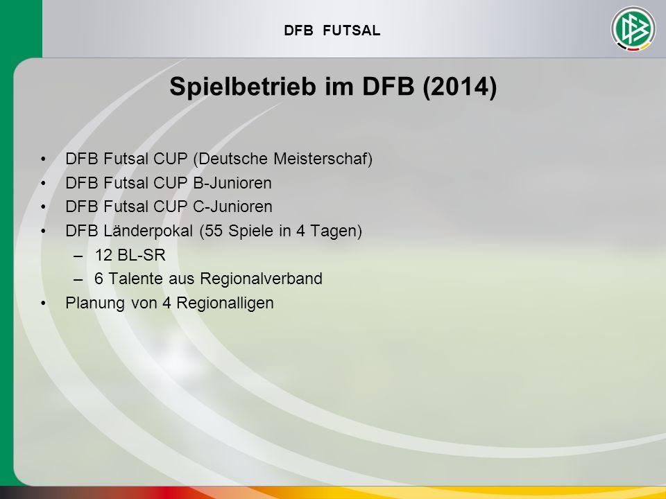 DFB FUTSAL Spielbetrieb im DFB (2014) DFB Futsal CUP (Deutsche Meisterschaf) DFB Futsal CUP B-Junioren DFB Futsal CUP C-Junioren DFB Länderpokal (55 S