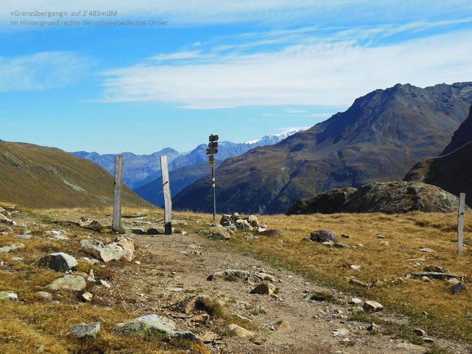 «Grenzübergang» auf 2485müM Im Hintergrund rechts der schneebedeckte Ortler