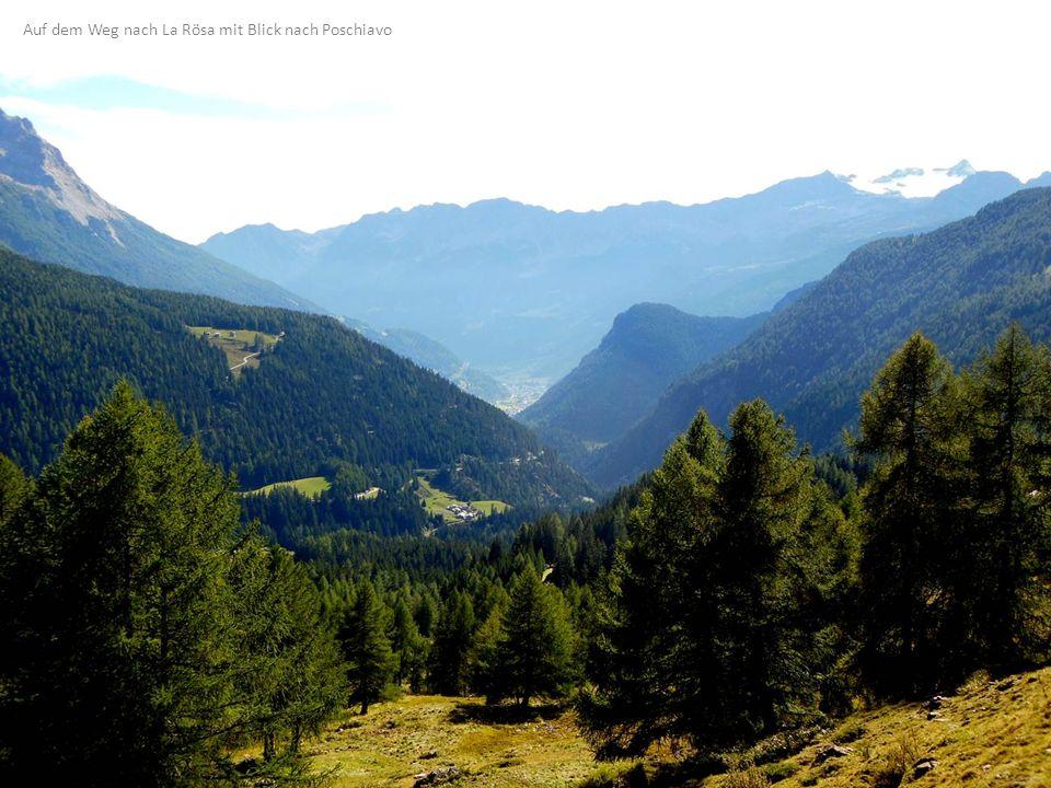 Auf dem Weg nach La Rösa mit Blick nach Poschiavo
