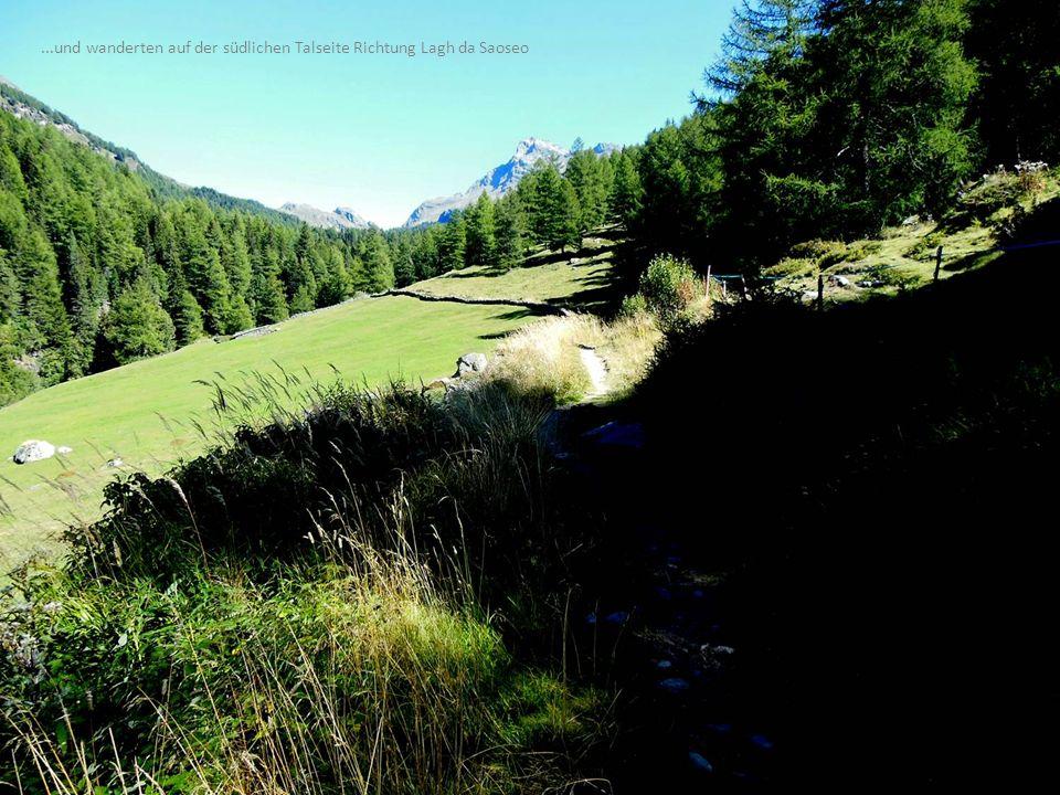 Unterwegs von Sfazù zum Lagh da Saoseo...und wanderten auf der südlichen Talseite Richtung Lagh da Saoseo