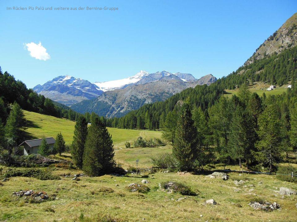 Im Rücken Piz Palü und weitere aus der Bernina-Gruppe