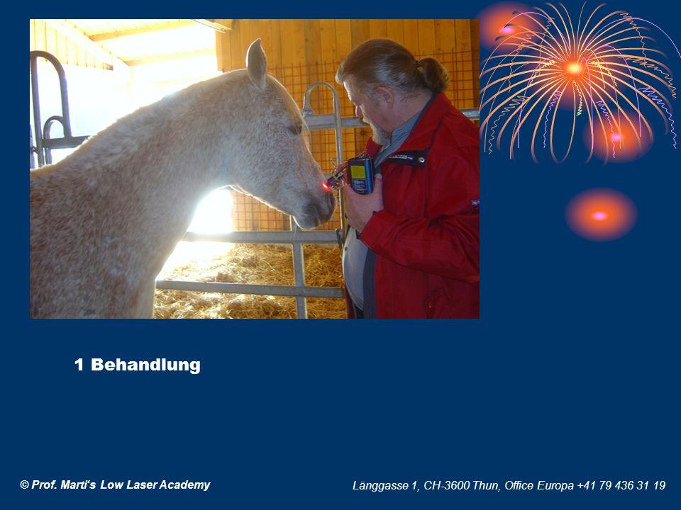 © Prof. Martis Low Laser Academy Länggasse 1, CH-3600 Thun, Office Europa +41 79 436 31 19 1 Behandlung