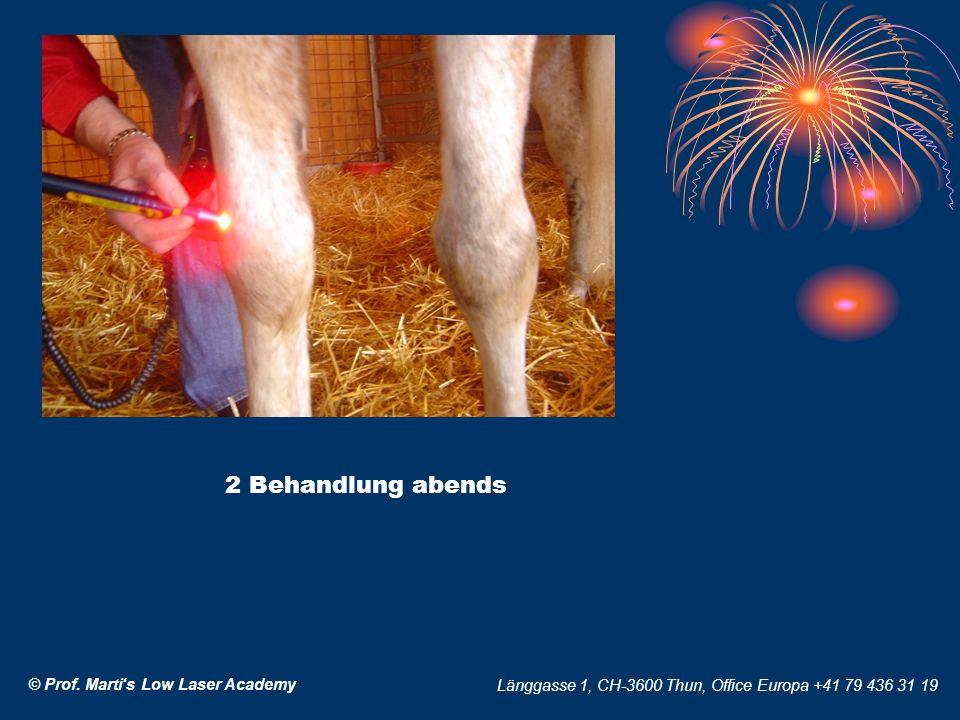 © Prof. Martis Low Laser Academy Länggasse 1, CH-3600 Thun, Office Europa +41 79 436 31 19 2 Behandlung abends
